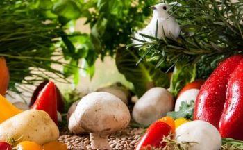Vegetarianer og kroppsbygger